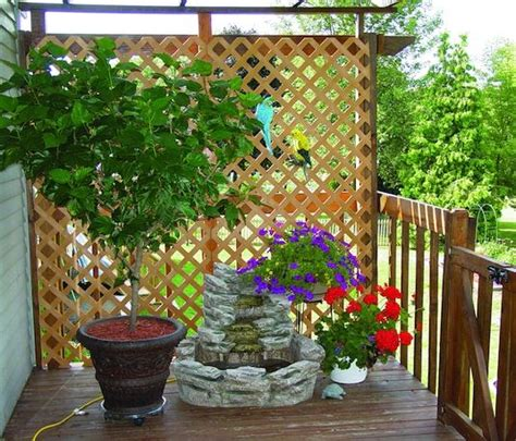 create privacy in your yard on some of these 9 attractive