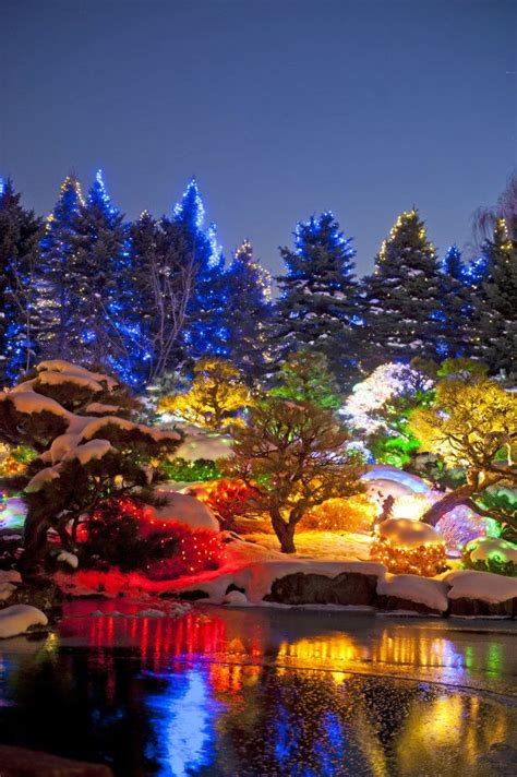 Denver Botanic Gardens Lights 10 Photos Of Colorado During The Holidays That Will Make You Never Want To Leave Home The