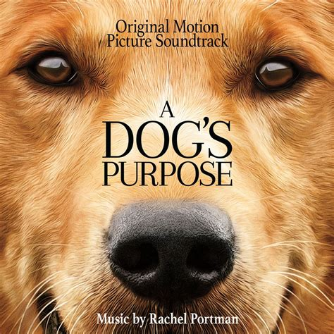 the dogs purpose soundtrack