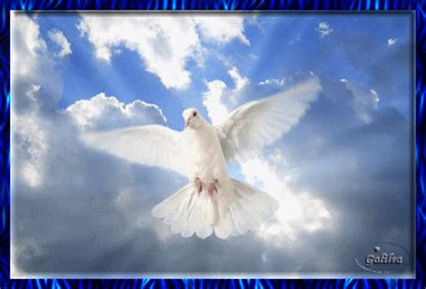 Imagenes Catolicas Espiritu Santo | imagenes religiosas espiritu santo