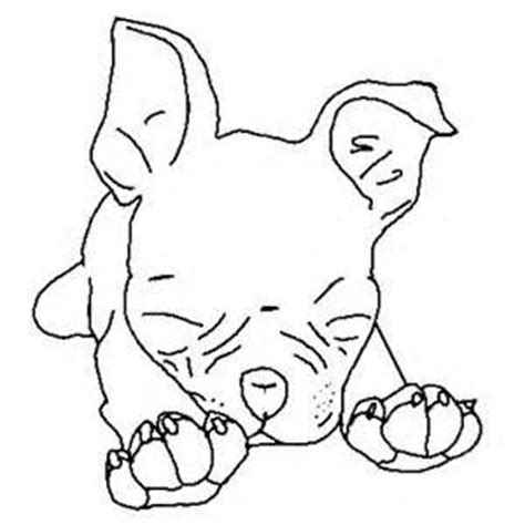 boston terrier coloring page boston terrier pages coloring pages