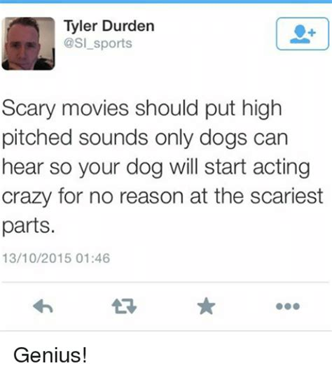 sounds only dogs can hear 25 best memes about durden durden memes