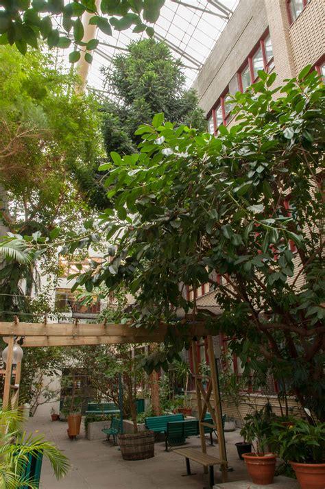 jardin int 233 rieur coll 232 ge de maisonneuve