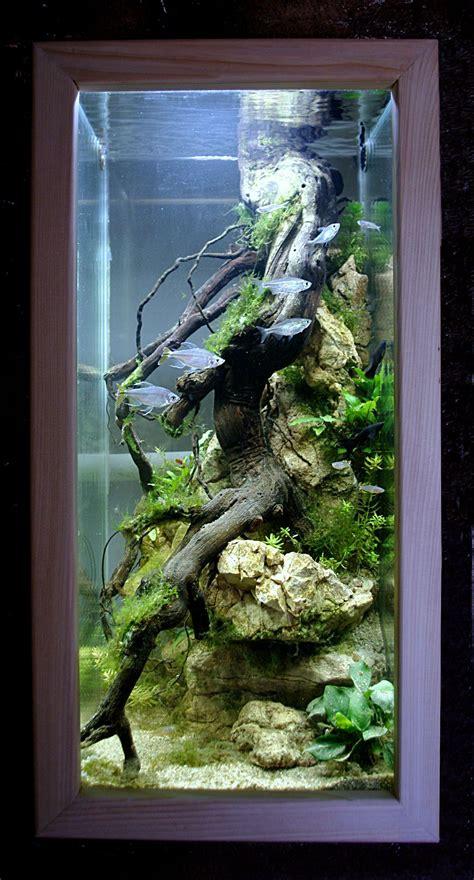 aquarium design pinterest aquarium colone design aquascape pinterest aquariums