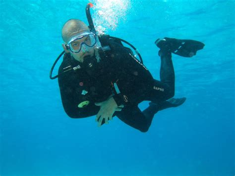 the dive the dive at mafia island mafia island