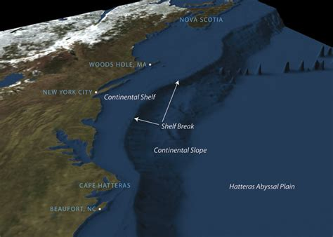 Pacific Continental Shelf by Where The Food Is In The Sea And Why Leadership