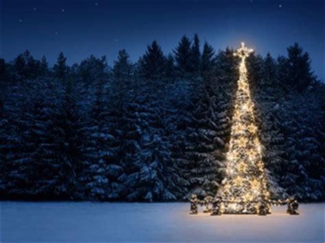 colorado mountain christmas tree dallas symphony orchestra presents denver rocky mountain event culturemap dallas