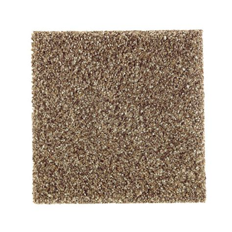pet proof rugs petproof carpet sle sachet ii color moon texture 8 in x 8 in mo 246074 the home