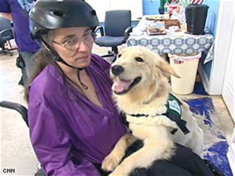 seizure alert dogs seizure alert dogs give new freedom to epilepsy sufferers cnn