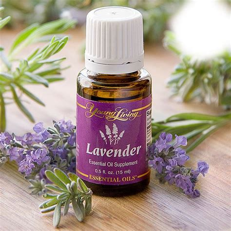 Minyak Esensial Lavender why living essential oils welcome to revitalizing