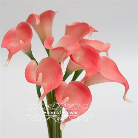 Real Flower Bouquet by Coral Calla Lilies Real Touch Flowers Bouquet For Bridal