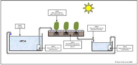 aquaponics diagram di system aquaponics ph 6 guide