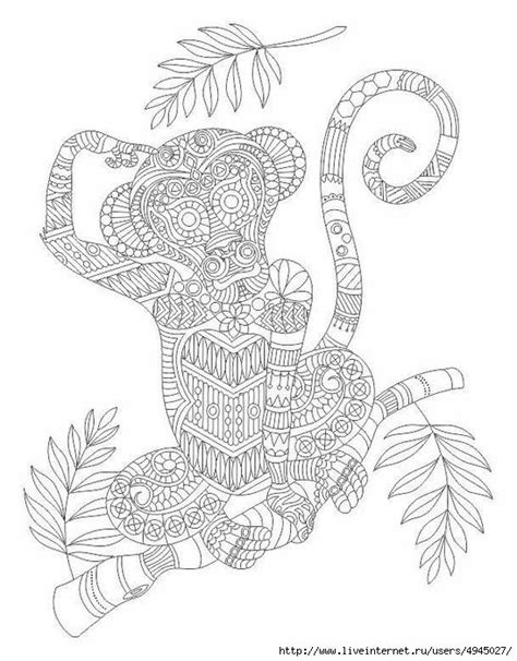 monkey coloring pages for adults 17 images about coloring pages adult advanced on