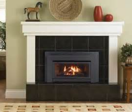 regency energy e21 small gas insert vancouver