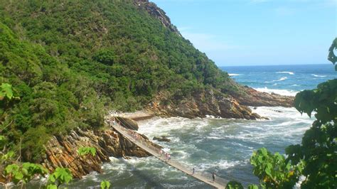Garden Route National Park by Garden Route Addo Elephant Park 5 Day Tour