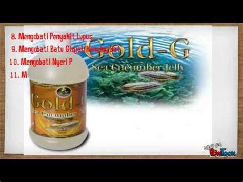 Jelly Gamat Gold G Goldg Gold G 320 Ml 320ml Rc testimonial pengguna gold g jelly sea cucumber