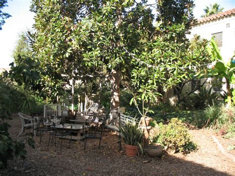 free fruit trees los angeles los angeles eco ecovillages lessons for