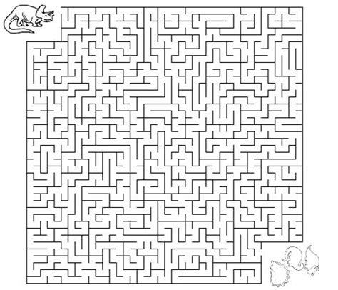 Printable Science Maze | dinosaur maze worksheet dinosaurs pinterest maze