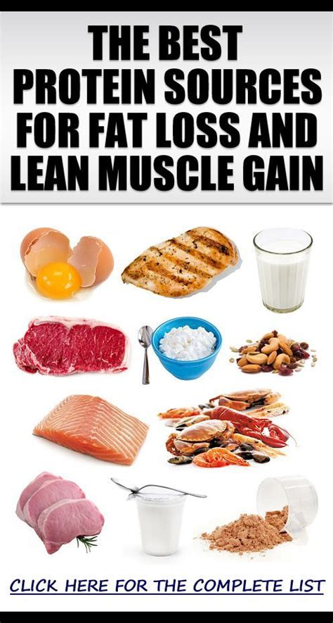healthy fats for gaining muscles workout plan to lose and gain lean eoua