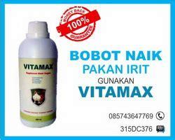 Suplemen Vitamax Ayam Broiler Solusi Sukses Ternak Ayam Broiler Mulai