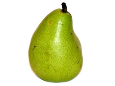 12 best images about pear pear clip art ripepears clip art pear tree clip artbird 第