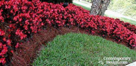 alternatives to beds mulch flower bed creative ideas about interior and furniture