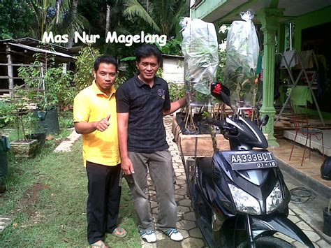 Bibit Durian Bawor Banjarnegara foto 15