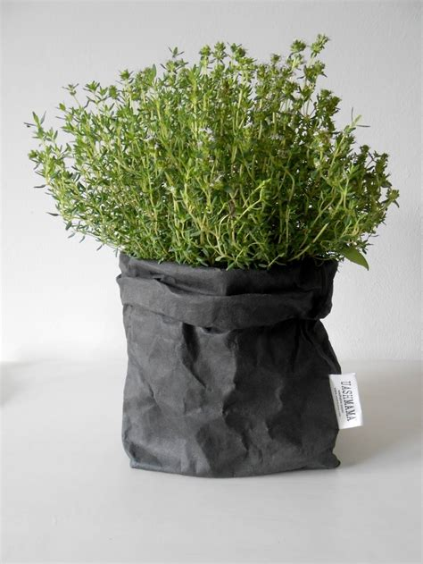 Paper From Plants - plant uashmama paper bag objectify