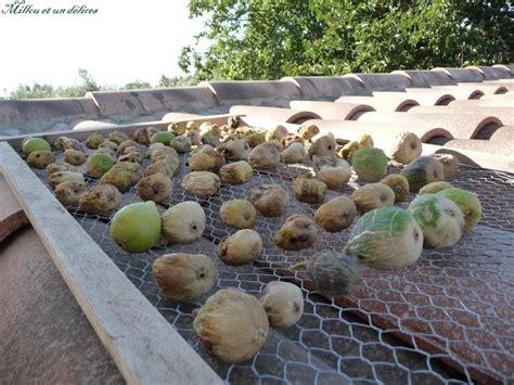 comment cuisiner les figues comment faire s 233 cher les figues millou et un d 233 lices