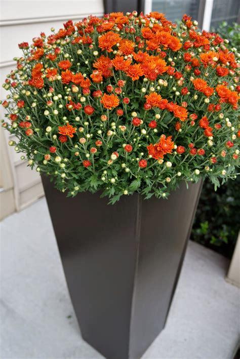 Ideas For Flower Planters by Decor Garden Planters Planters Large