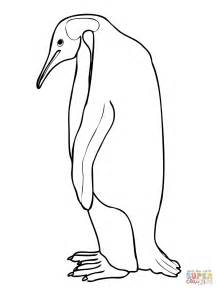 Emperor Penguin Outline by Emperor Penguin Coloring Page Free Printable Coloring Pages