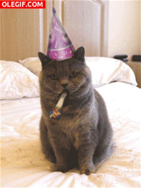 new year animal birthday gif feliz cumplea 241 os gif 4787