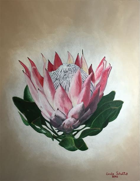 tattoo protea flower 227 best images about protea on pinterest oil on canvas