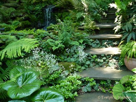 Front Yard Fountains Woodland Garden Eclectic Landscape Other Metro By