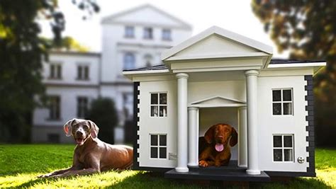 extravagant dog houses the most expensive dog mansions in the world paperblog