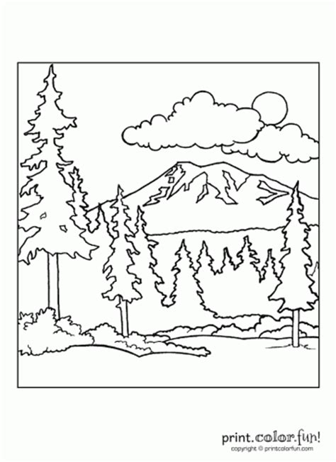 Rainforest Colouring Page Forest Scene Coloring Page Print Color Fun by Rainforest Colouring Page