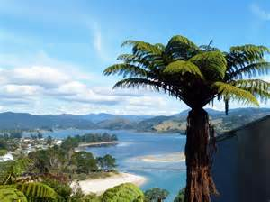 neuseeland haus aussicht 252 ber tairua haus am meer in neuseeland kaufen