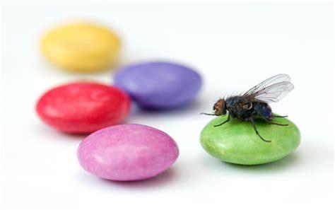 Berapa Obat Cacing Combantrin bila dimakan cacing ini diklaim bisa pulihkan radang pada usus