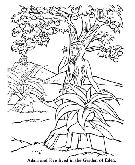 coloring pages of the garden of eden adam and eve lived in the garden of eden coloring page