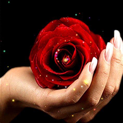 imagenes gif wasap animaciones con rosas o flores con brillo y destello