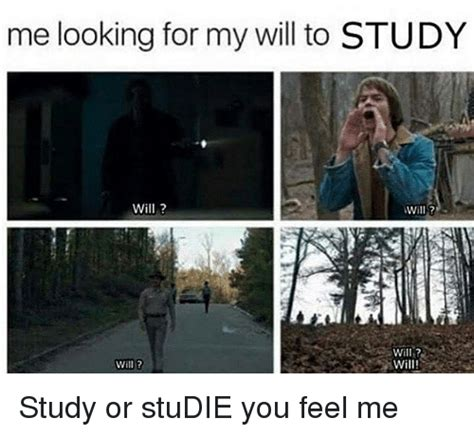 Searching For Me Me Looking For My Will To Study Will Will Will Study Or Studie You Feel Me Meme