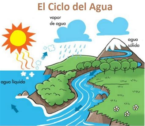 imagenes educativas sobre el agua ficha educativa aprender el ciclo del agua