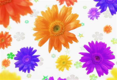 Beautiful Desktop Photos Background Wallpapers Amazing Pictures Of Colorful Flowers
