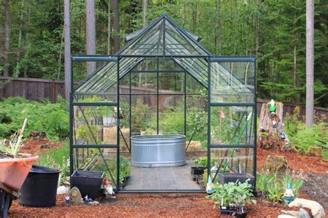 growing vegetables   greenhouse   dollars