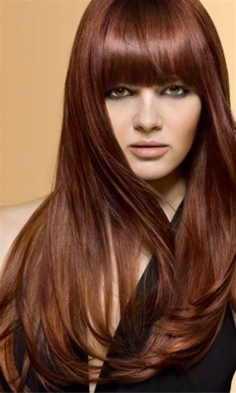 light chocolate brown hair color chestnut golden brown hair color brown hairs