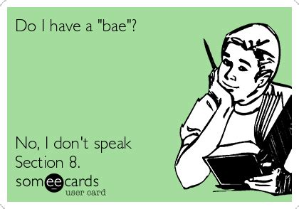 funny about me sections do i have a quot bae quot no i don t speak section 8 thinking