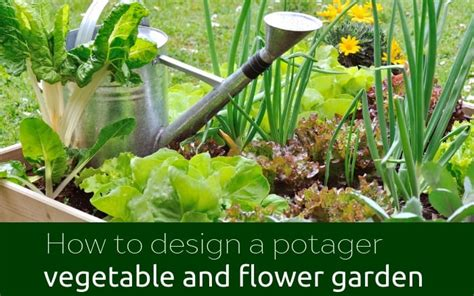 design  potager vegetable  flower garden