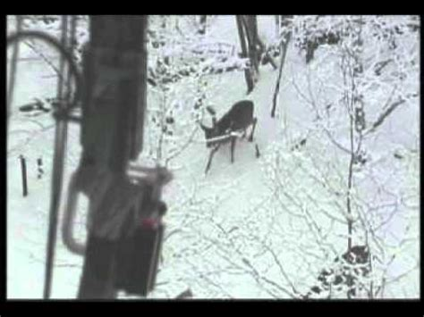 best of jeff miller wisconsin bow hunt snow bowhunting whitetail doe harvest doovi