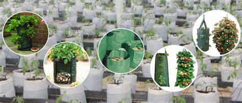 Jual Planter Bag jual planter bag karung tempat tanaman untuk perkebunan