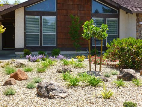 low maintenance front yard landscapingpleted project petaluma garden trends
